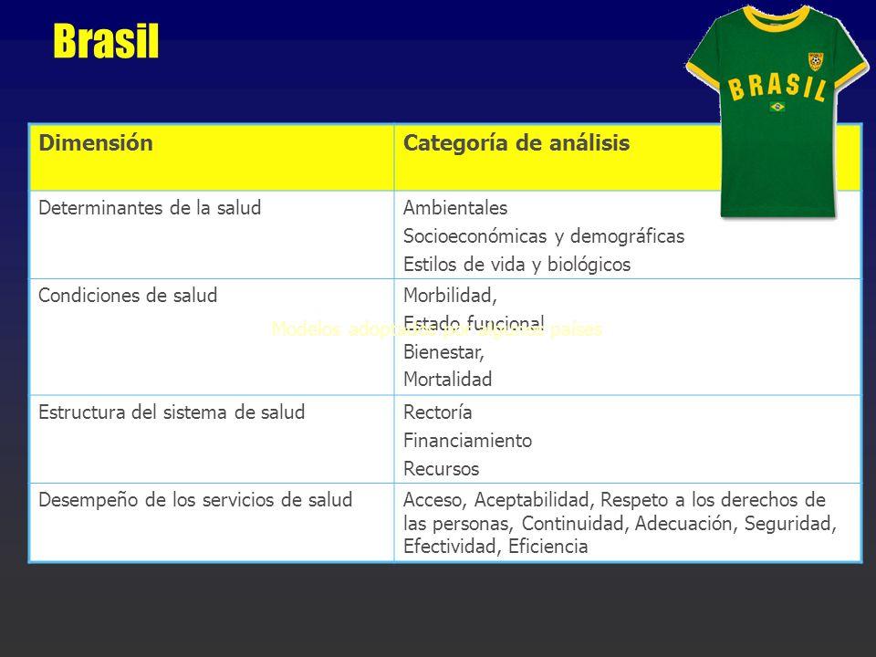 Brasil DimensiónCategoría de análisis Determinantes de la saludAmbientales Socioeconómicas y demográficas Estilos de vida y biológicos Condiciones de