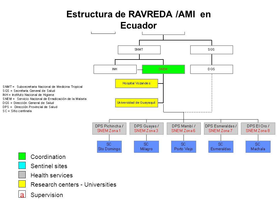 Estructura de RAVREDA /AMI en Ecuador Coordination Sentinel sites Health services Research centers - Universities a Supervision