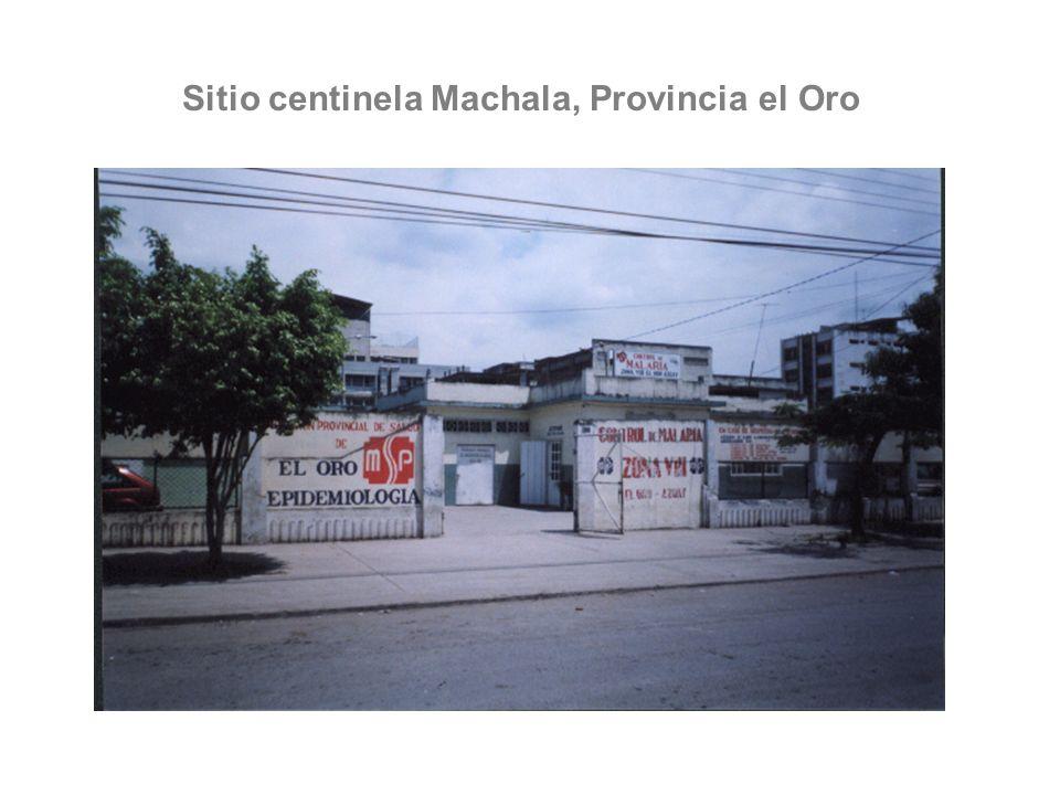Sitio centinela Machala, Provincia el Oro Machala - Ecuador