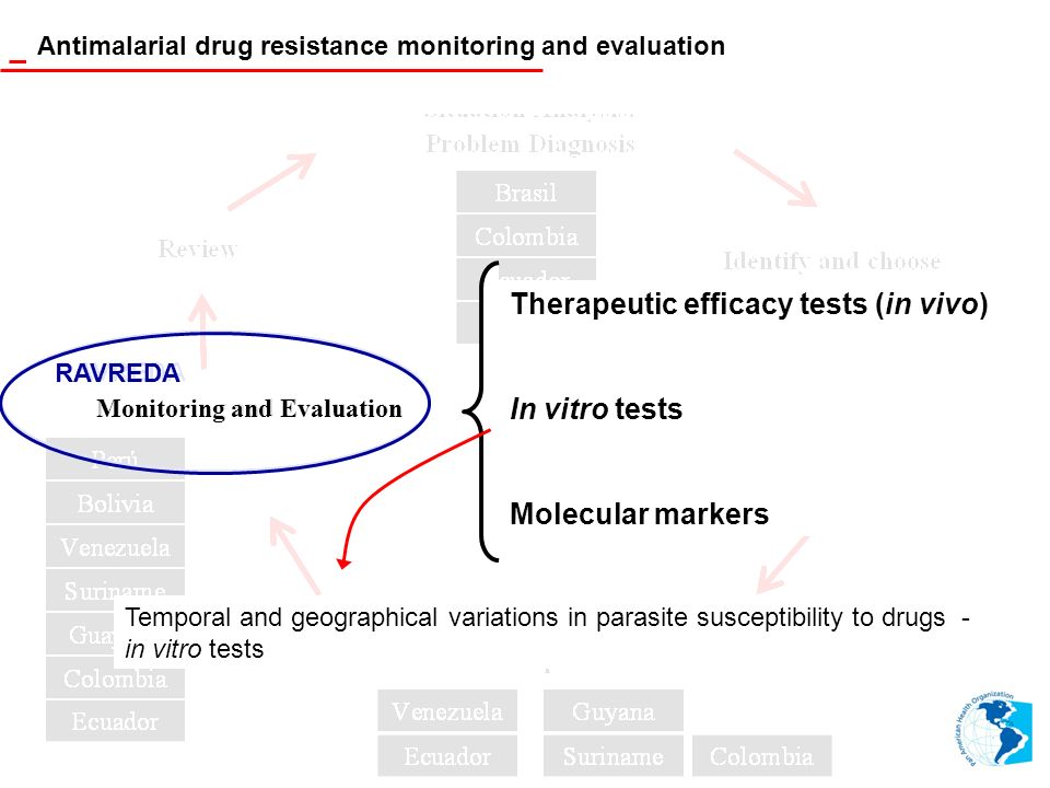 Therapeutic efficacy tests (in vivo) In vitro tests Molecular markers Antimalarial drug resistance monitoring and evaluation Monitoring and Evaluation