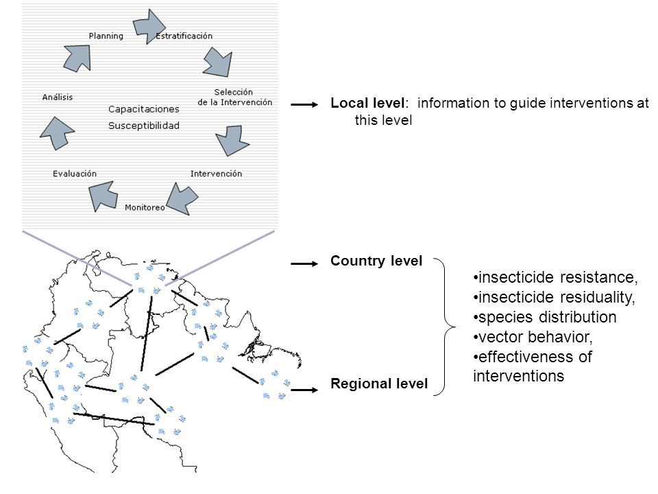 Local level: information to guide interventions at this level Country level Regional level insecticide resistance, insecticide residuality, species di