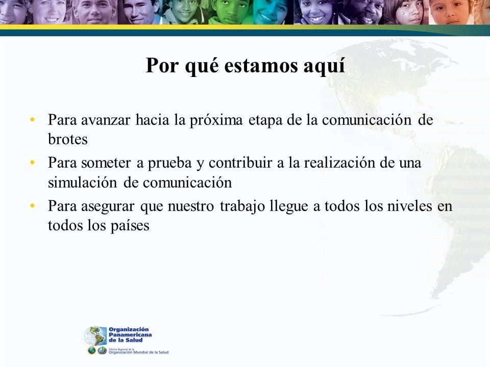 Otros componentes de proyectos Reunión de Ginebra 2005 3 a Reunión mundial de comunicaciones sobre la gripe pandémica (Cairo 2007) Resultados: –Planes de trabajo sobre movilización social, mensajes –Sugerencia para establecer el Sistema de Intercambio de Información Pública sobre Comunicaciones de Brotes Epidémicos