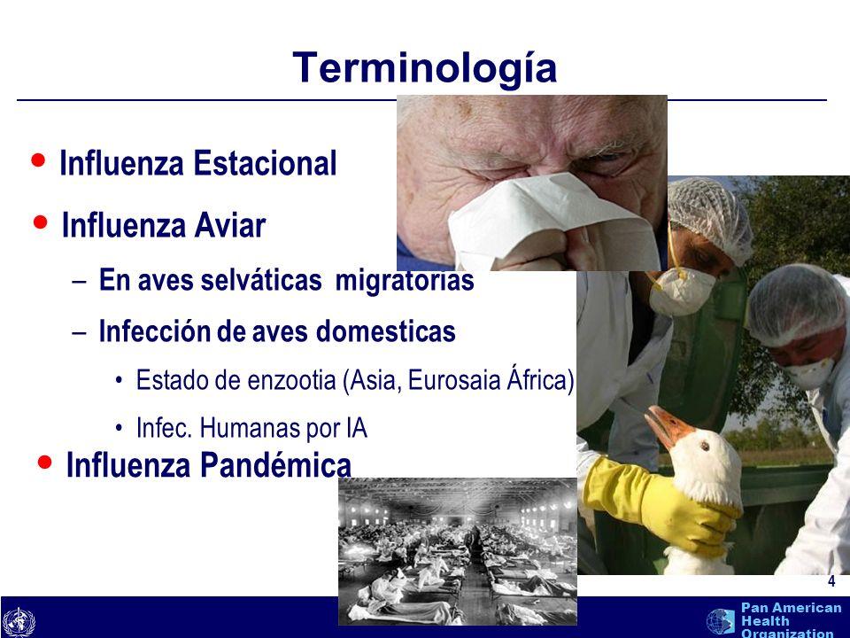 text 5 Pan American Health Organization Influenza Estacional Subtipos humanos circulantes: Subtipos humanos circulantes: H1N1, H3N2, H1N2 H1N1, H3N2, H1N2 Propagación por secreciones respiratorias (microgotas) Período de incubación 1-4 días (promedio 2 días) Periodo infeccioso empieza el día antes de la aparición de síntomas hasta aproximadamente 5 días después del comienzo de enfermedad Enfermedad generalmente dura de 3-7 días Vacunación contra la influenza primera línea de defensa Para EE.UU.: – tasa de ataque es de 5-20% – 200,000 hospitalizaciones – 36,000 defunciones http://www.placer.ca.gov/hhs/hhs-sub/com-diseases/flu-fact-sheet.htm