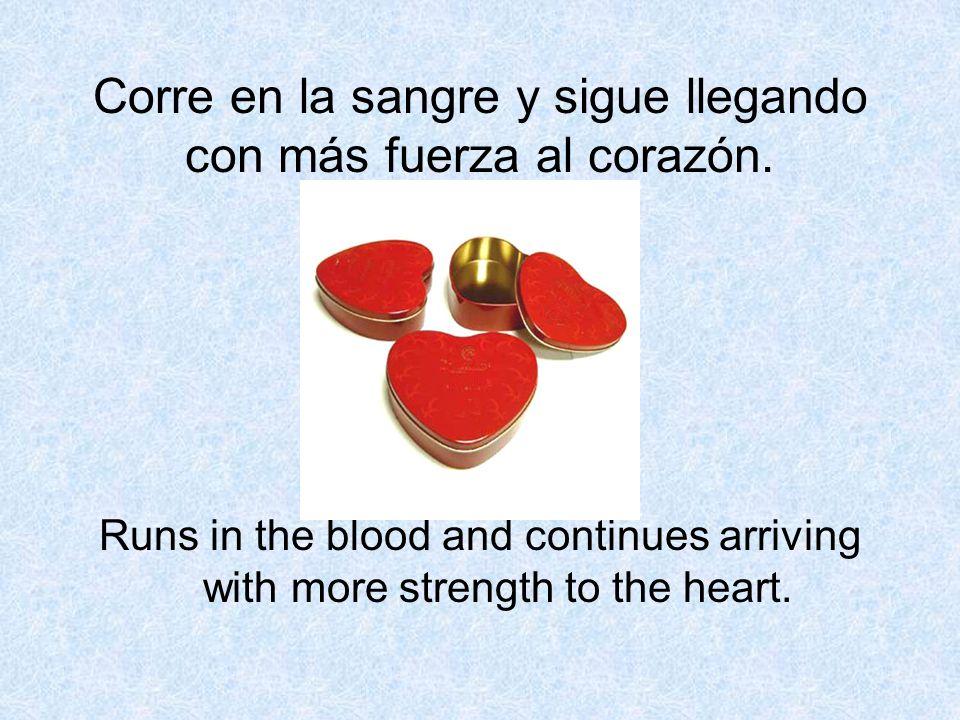 Corre en la sangre y sigue llegando con más fuerza al corazón. Runs in the blood and continues arriving with more strength to the heart.