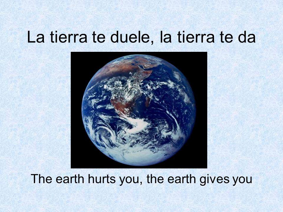 La tierra te duele, la tierra te da The earth hurts you, the earth gives you