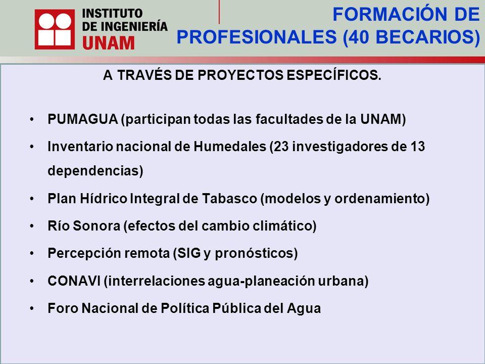 A TRAVÉS DE PROYECTOS ESPECÍFICOS. PUMAGUA (participan todas las facultades de la UNAM) Inventario nacional de Humedales (23 investigadores de 13 depe