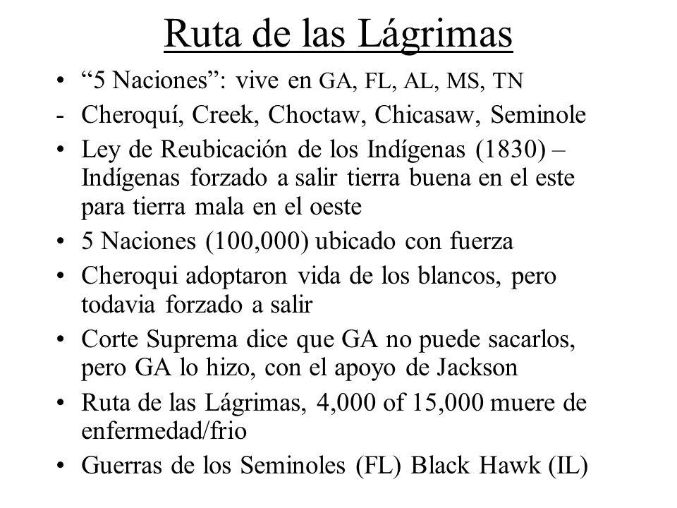 Ruta de las Lágrimas 5 Naciones: vive en GA, FL, AL, MS, TN -Cheroquí, Creek, Choctaw, Chicasaw, Seminole Ley de Reubicación de los Indígenas (1830) –