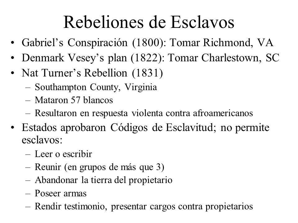 Rebeliones de Esclavos Gabriels Conspiración (1800): Tomar Richmond, VA Denmark Veseys plan (1822): Tomar Charlestown, SC Nat Turners Rebellion (1831)