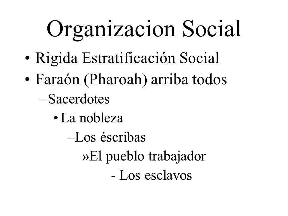 Organizacion Social Rigida Estratificación Social Faraón (Pharoah) arriba todos –Sacerdotes La nobleza –Los éscribas »El pueblo trabajador - Los escla