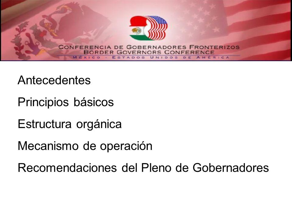 Antecedentes Principios básicos Estructura orgánica Mecanismo de operación Recomendaciones del Pleno de Gobernadores