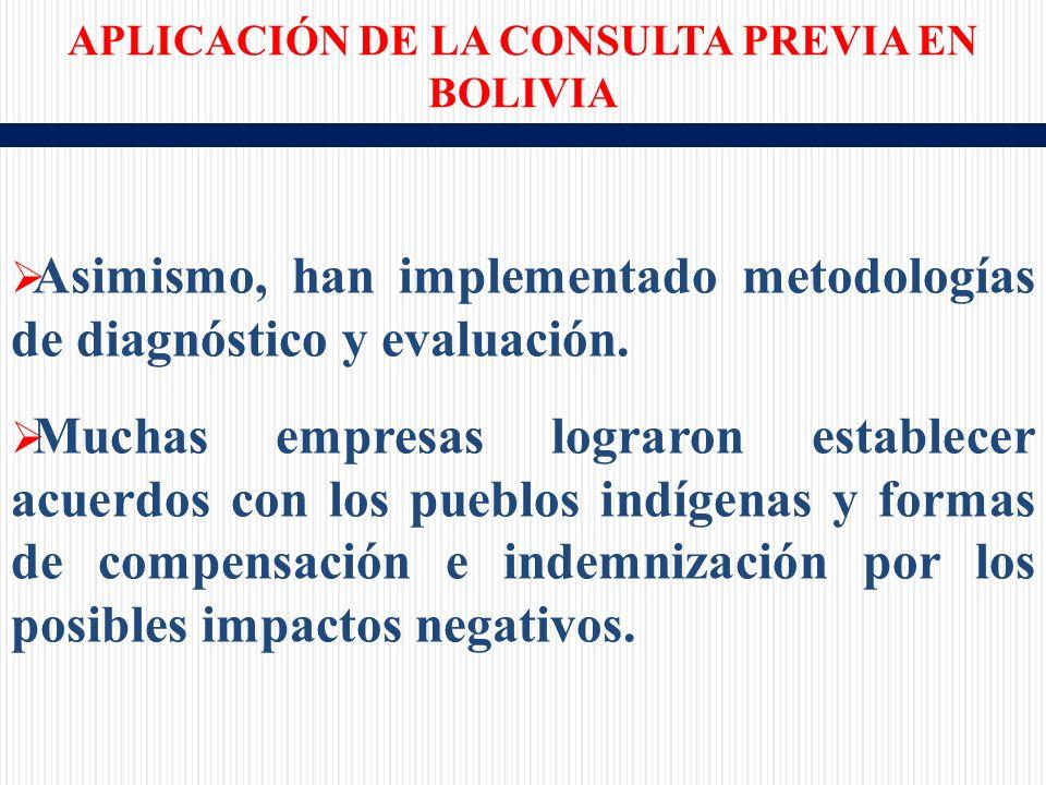 Asimismo, han implementado metodologías de diagnóstico y evaluación.