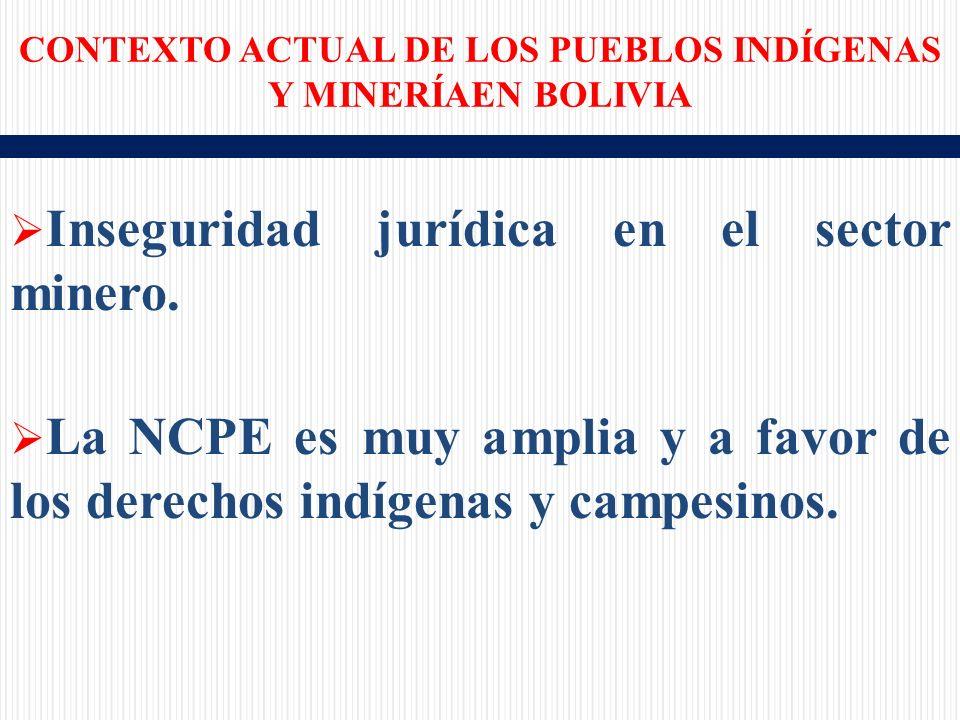 Inseguridad jurídica en el sector minero.