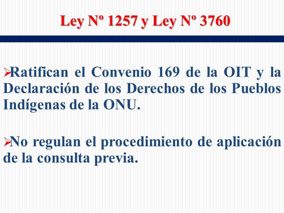 Ratifican el Convenio 169 de la OIT y la Declaración de los Derechos de los Pueblos Indígenas de la ONU.