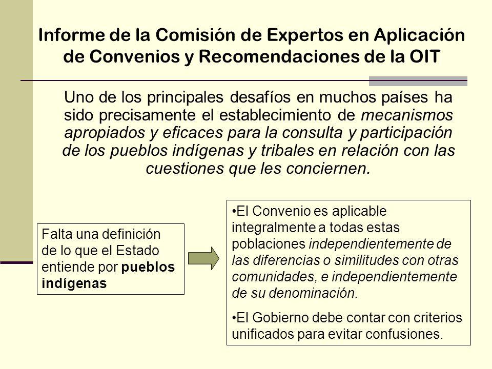 Informe de la Comisión de Expertos en Aplicación de Convenios y Recomendaciones de la OIT Uno de los principales desafíos en muchos países ha sido pre