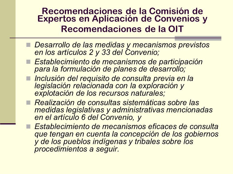 Recomendaciones de la Comisión de Expertos en Aplicación de Convenios y Recomendaciones de la OIT Desarrollo de las medidas y mecanismos previstos en