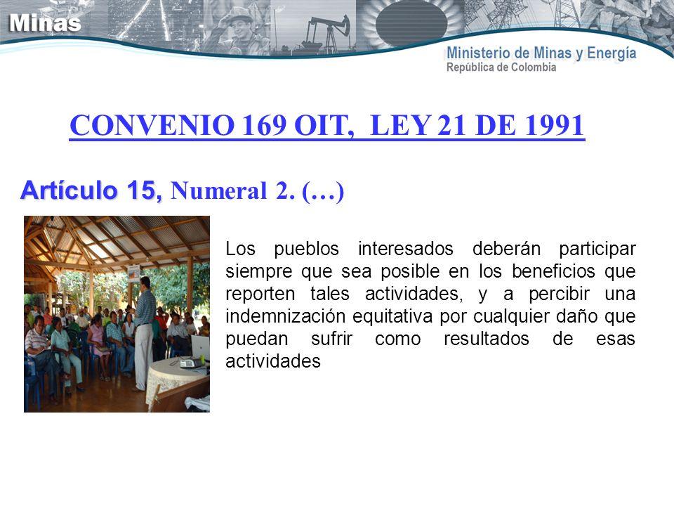 CONVENIO 169 OIT, LEY 21 DE 1991 Artículo 15, Artículo 15, Numeral 2. (…) Los pueblos interesados deberán participar siempre que sea posible en los be