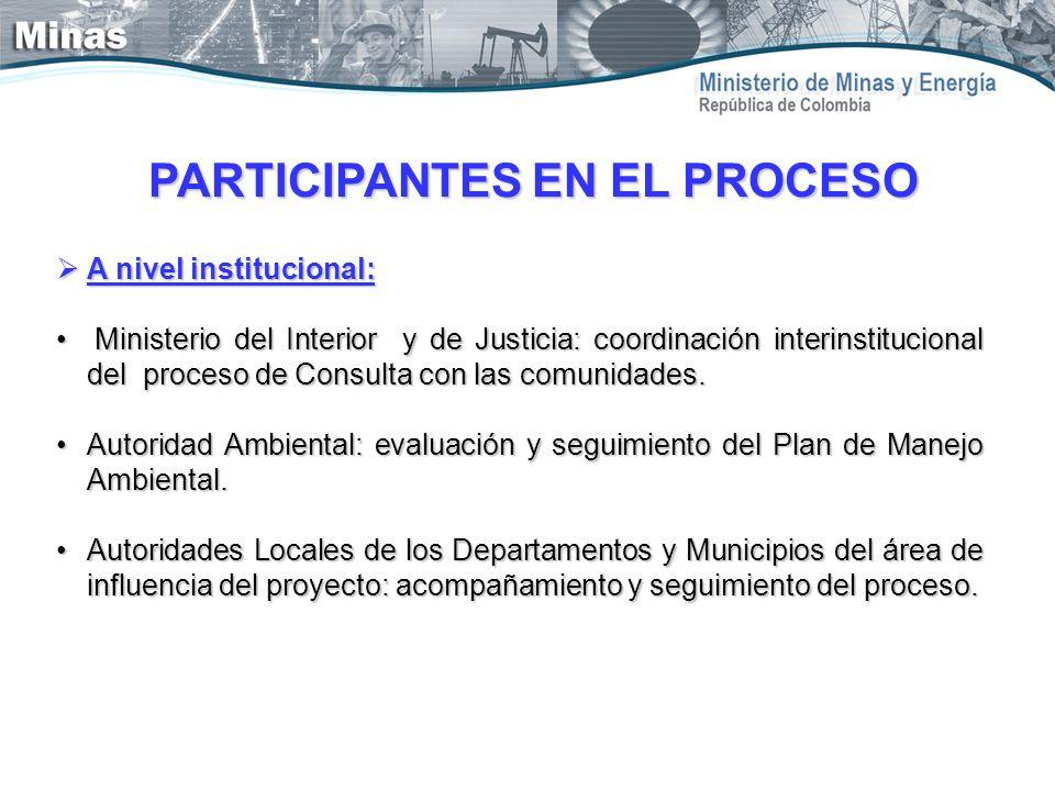 A nivel institucional: A nivel institucional: Ministerio del Interior y de Justicia: coordinación interinstitucional del proceso de Consulta con las c