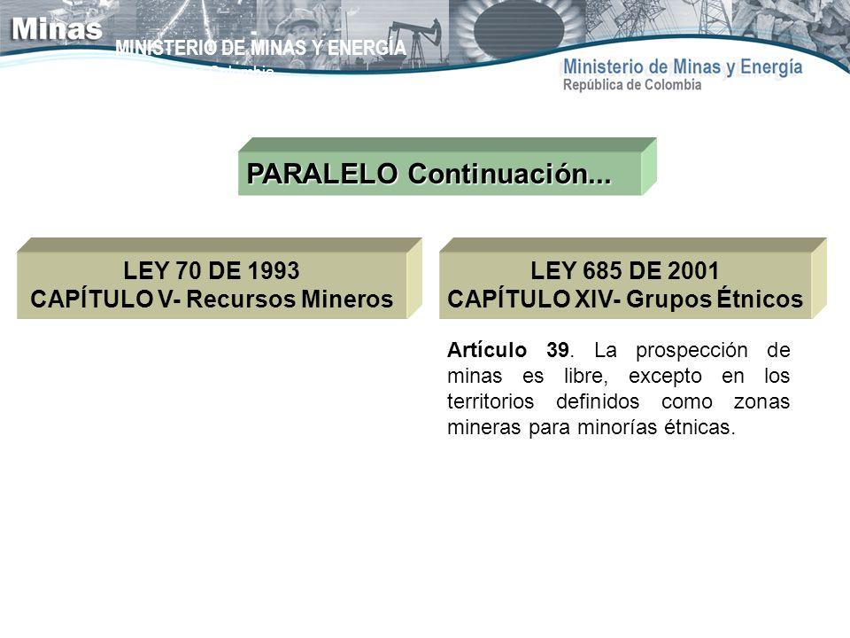 MINISTERIO DE MINAS Y ENERGÍA República de Colombia PARALELO Continuación... LEY 70 DE 1993 CAPÍTULO V- Recursos Mineros Artículo 39. La prospección d