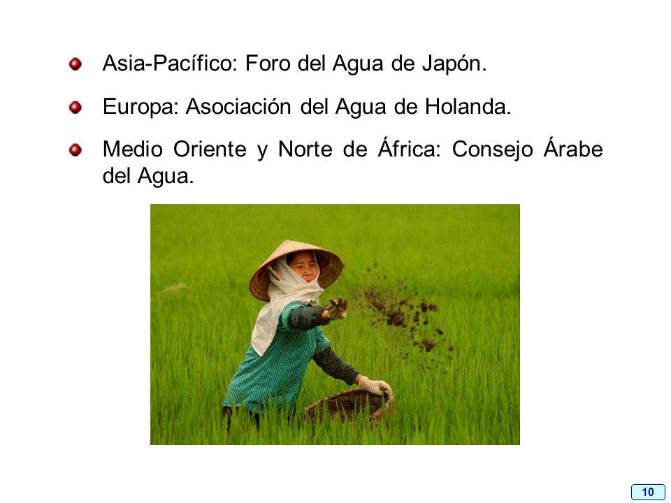 10 Asia-Pacífico: Foro del Agua de Japón. Europa: Asociación del Agua de Holanda. Medio Oriente y Norte de África: Consejo Árabe del Agua.