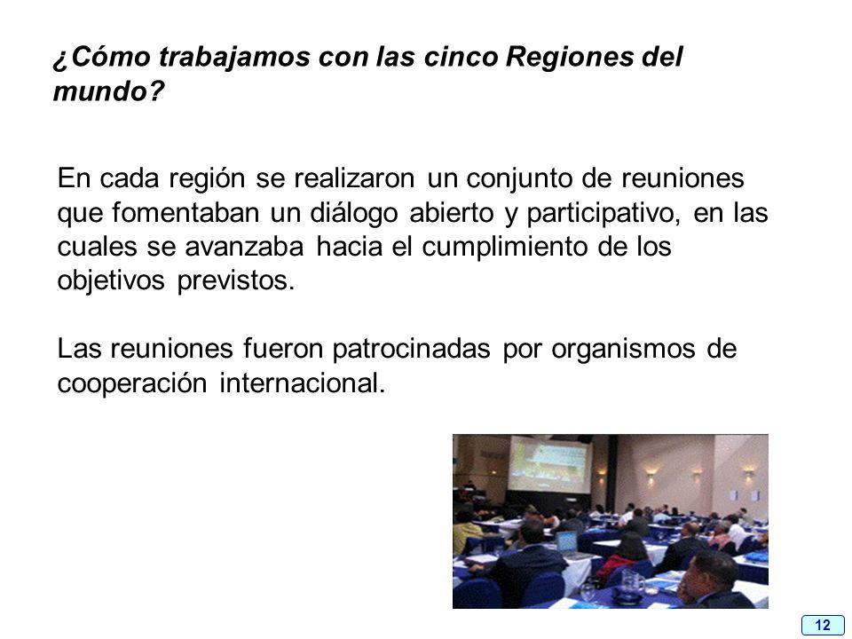 12 En cada región se realizaron un conjunto de reuniones que fomentaban un diálogo abierto y participativo, en las cuales se avanzaba hacia el cumplim