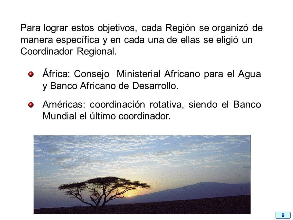 9 Para lograr estos objetivos, cada Región se organizó de manera específica y en cada una de ellas se eligió un Coordinador Regional. África: Consejo