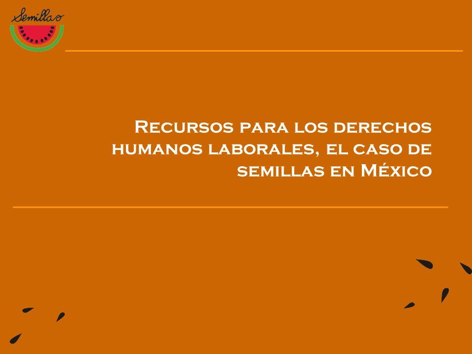 Recursos para los derechos humanos laborales, el caso de semillas en México