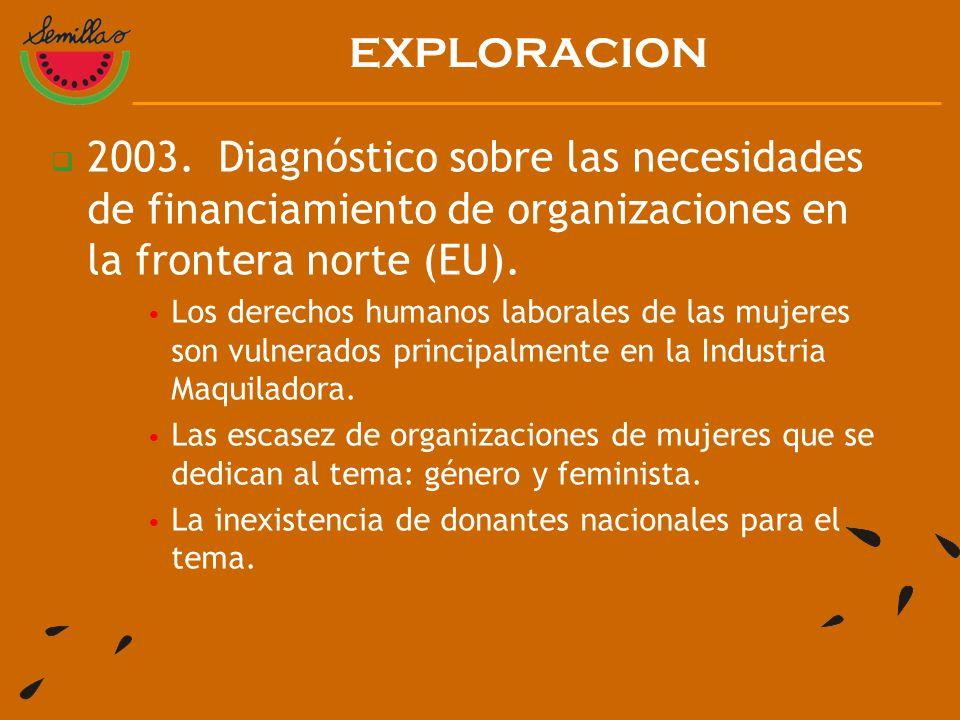 2003. Diagnóstico sobre las necesidades de financiamiento de organizaciones en la frontera norte (EU). Los derechos humanos laborales de las mujeres s