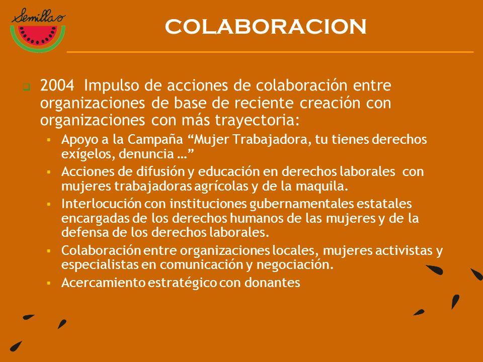 2004 Impulso de acciones de colaboración entre organizaciones de base de reciente creación con organizaciones con más trayectoria: Apoyo a la Campaña