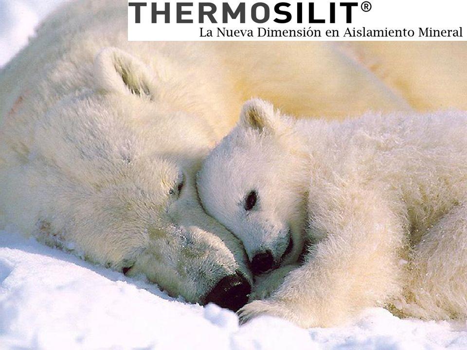 –Februar 2009–Thermosilit – die neue Dimension im mineralischen Dämmen