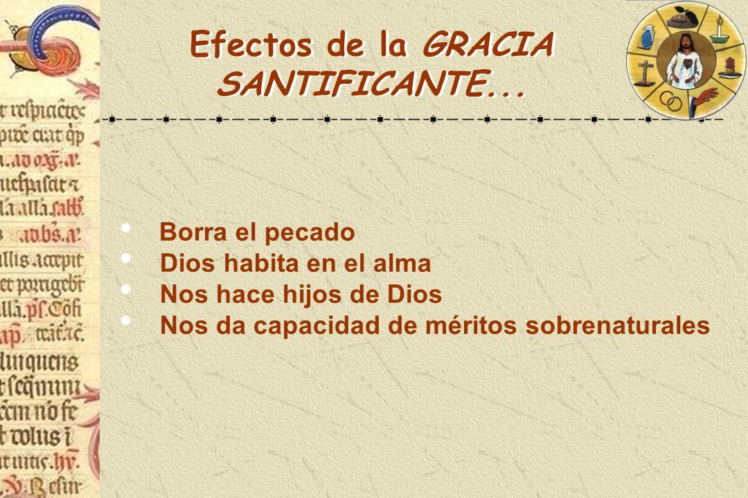 Efectos a) Aumenta la gracia santificante b) Confiere la gracia sacramental específica c) Imprime carácter en el alma LA CONFIRMACIÓN