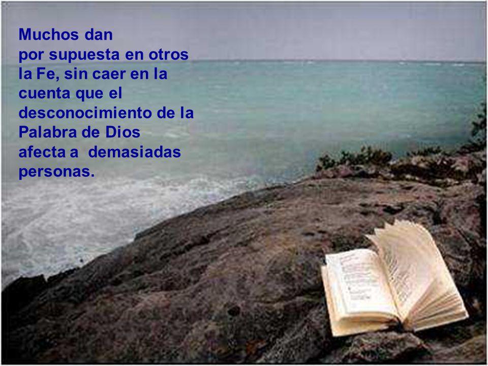 Muchos dan por supuesta en otros la Fe, sin caer en la cuenta que el desconocimiento de la Palabra de Dios afecta a demasiadas personas.