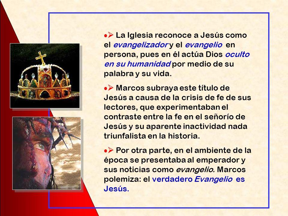Jes ú s responde: « Id y contad a Juan lo que o í s y veis: los ciegos ven y los cojos andan, los leprosos quedan limpios y los sordos oyen, los muert