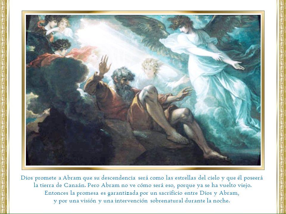 Dios promete a Abram que su descendencia será como las estrellas del cielo y que él poseerá la tierra de Canaán. Pero Abram no ve cómo será eso, porqu