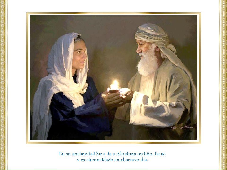 En su ancianidad Sara da a Abraham un hijo, Isaac, y es circuncidado en el octavo día.
