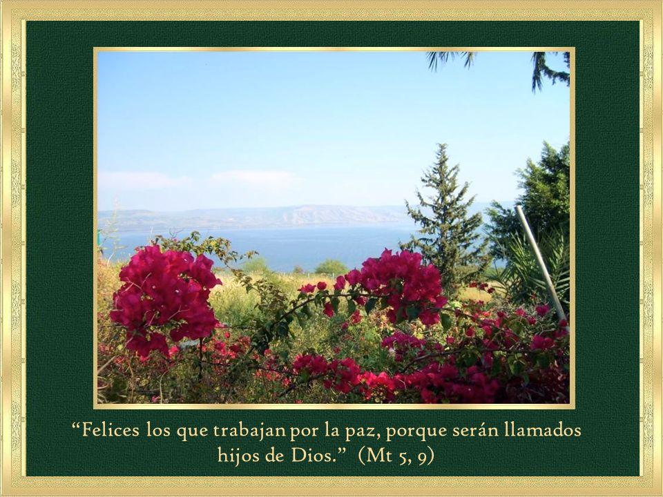 En el lenguaje de la Sagrada Escritura el corazón indica el centro de la persona, es decir su vida interior y espiritual.