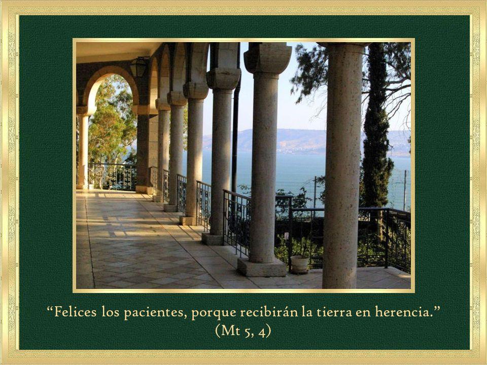 Felices los pacientes, porque recibirán la tierra en herencia. (Mt 5, 4)