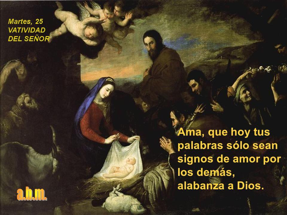 Celebra en familia el nacimiento de Dios, sé atento, ofrécete a colaborar, busca los puntos de encuentro en lugar de los puntos de diferencia.