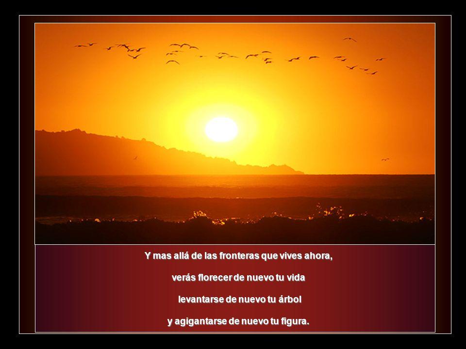 Si tienes capacidad para el amor, gratitud en el alma; voluntad para servir, alcance en la inteligencia… alcance en la inteligencia… de TI mismo brota