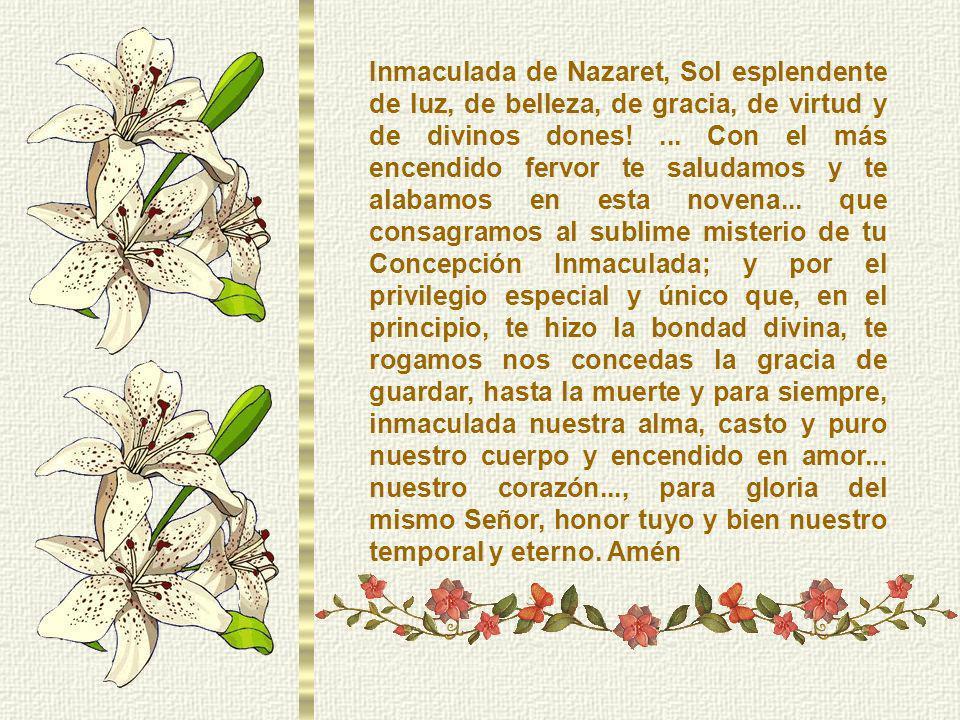 Inmaculada de Nazaret, Sol esplendente de luz, de belleza, de gracia, de virtud y de divinos dones!...