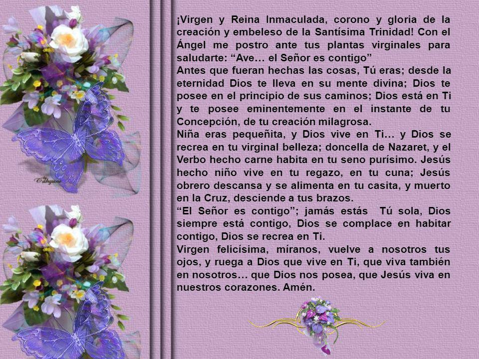¡Virgen y Reina Inmaculada, corono y gloria de la creación y embeleso de la Santísima Trinidad.