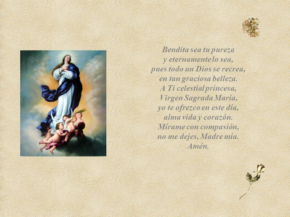 Amén. Cecilia Rangel