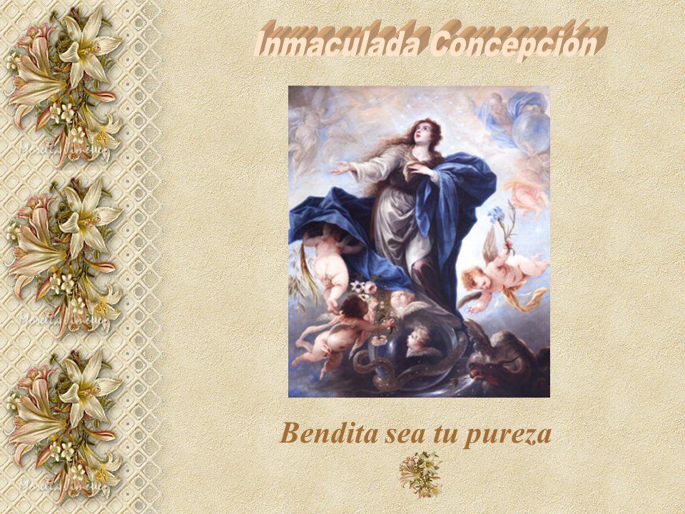 Bendita sea tu pureza. Sublime, excelsa, arrobadora; única después de la pureza divina; la primera pureza de la creación, la más cándida, la más limpi