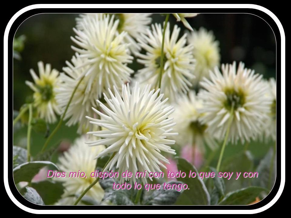 y aprenda a compartir dolor y alegría con un gran amor.