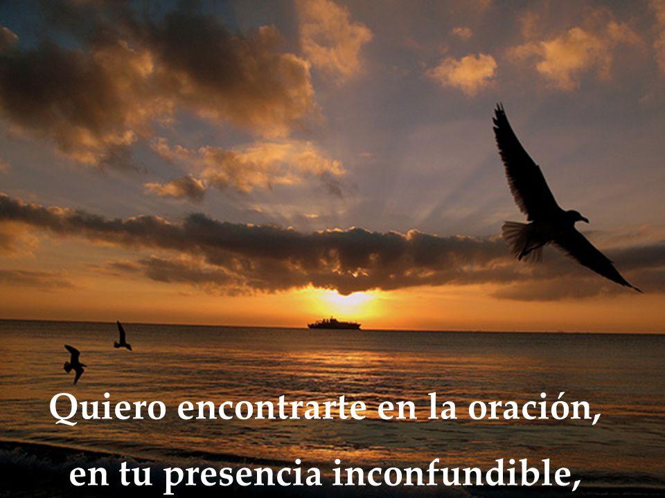 Quiero encontrarte en la oración, en tu presencia inconfundible,