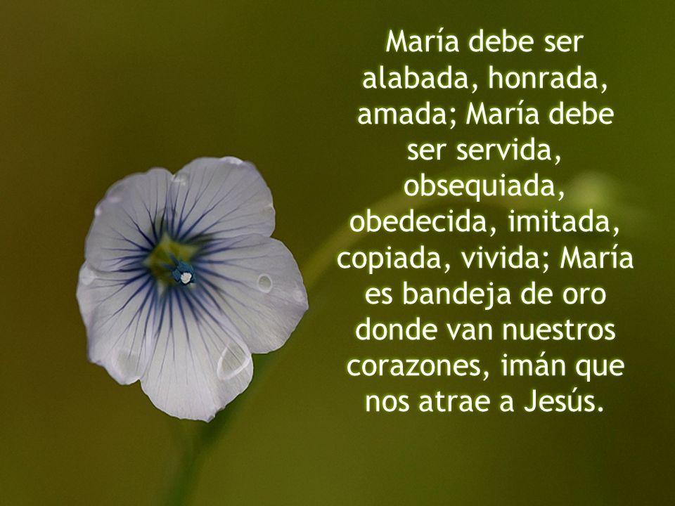 María debe ser alabada, honrada, amada; María debe ser servida, obsequiada, obedecida, imitada, copiada, vivida; María es bandeja de oro donde van nue