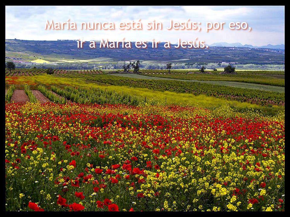 María nunca está sin Jesús; por eso, ir a María es ir a Jesús. María nunca está sin Jesús; por eso, ir a María es ir a Jesús.