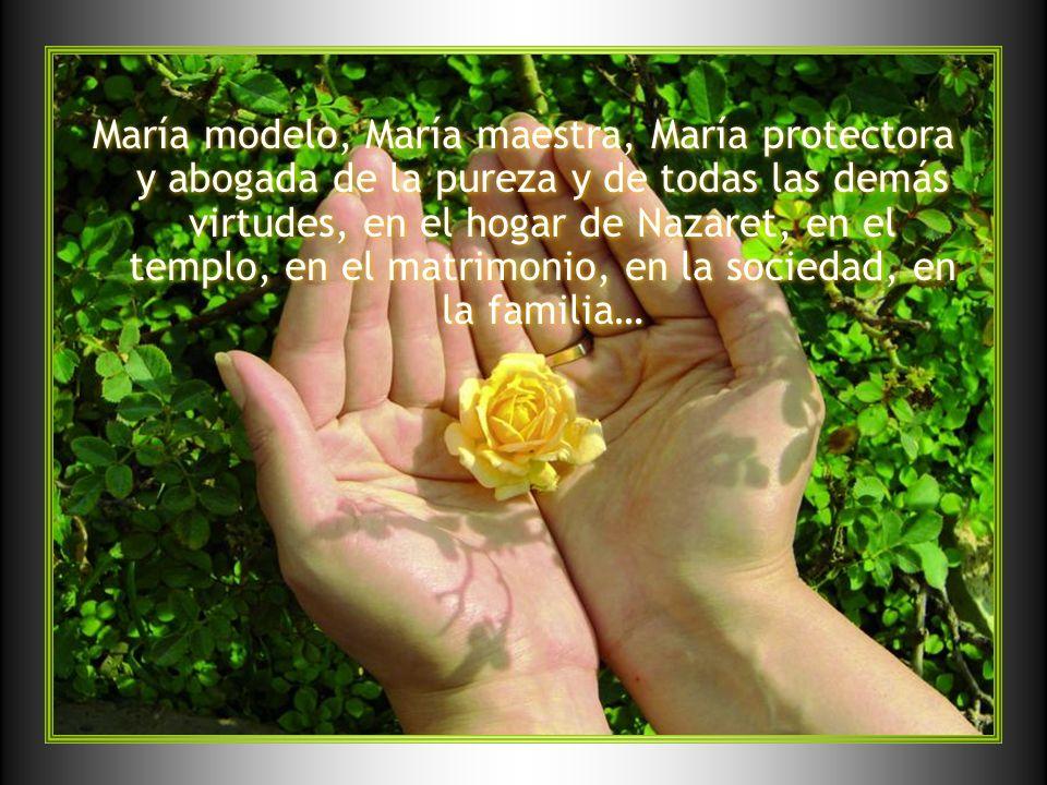 María modelo, María maestra, María protectora y abogada de la pureza y de todas las demás virtudes, en el hogar de Nazaret, en el templo, en el matrim