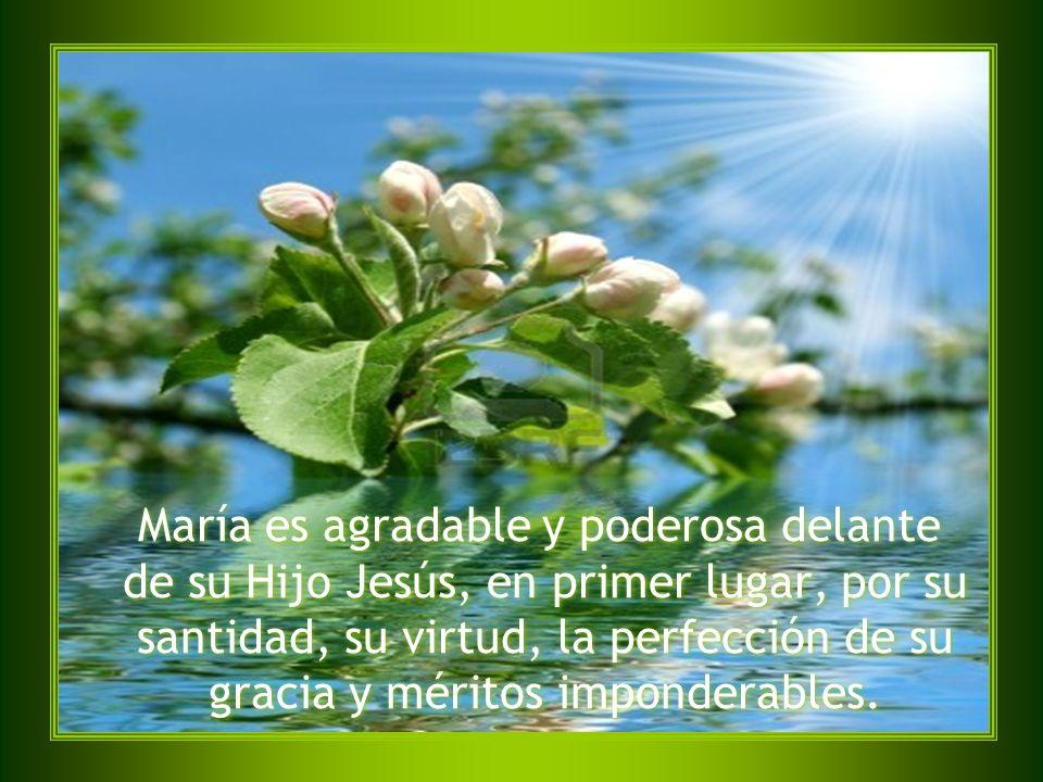 María es agradable y poderosa delante de su Hijo Jesús, en primer lugar, por su santidad, su virtud, la perfección de su gracia y méritos imponderable