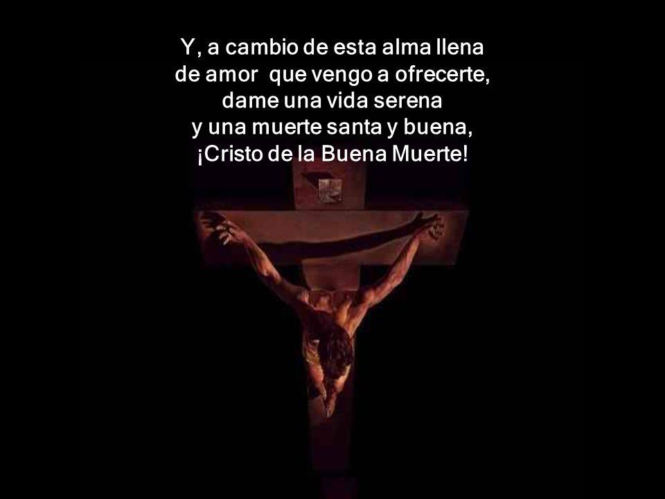 A ofrecerte, Señor, vengo, mi ser, mi vida, mi amor, mi alegría, mi dolor; cuanto puedo y cuanto tengo, cuanto me has dado, Señor.