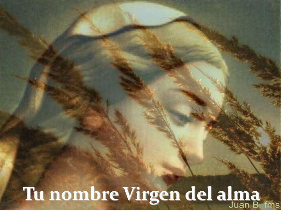 Tu nombre Virgen María